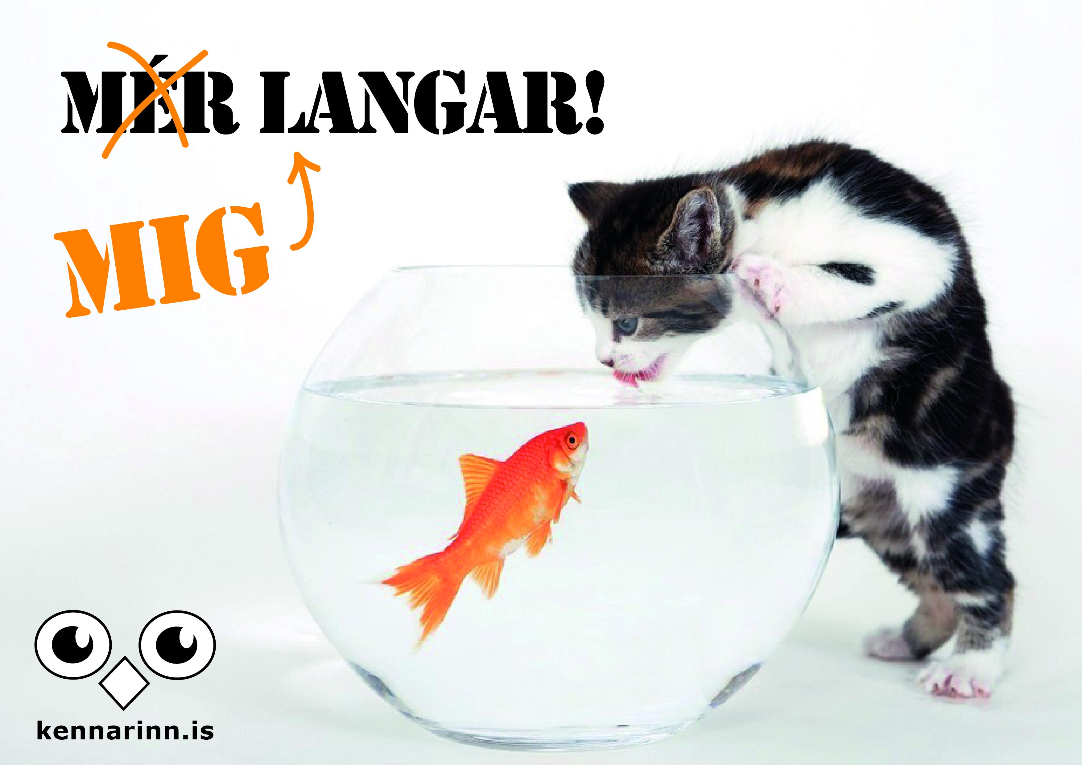 mig_langar-01