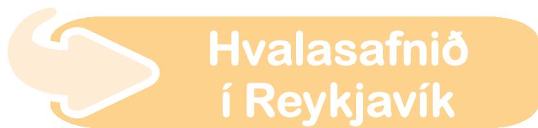 Hvalasafnið í Reykjavík